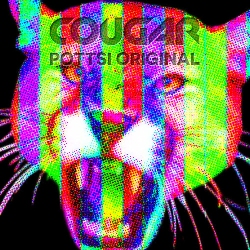 Cougar (Pottsi Original)