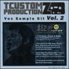 TCustomz Productionz Vox Kit Vol. 2 DEMO