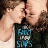 Birdy Not About Angels Piano Cover (Ost The Fault In Our Stars)