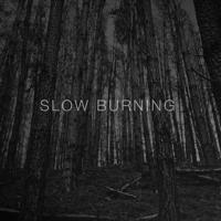 Flamingo - Slow Burning