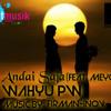 Wahyu pW - Andai Saja (Feat. Meyga NA)