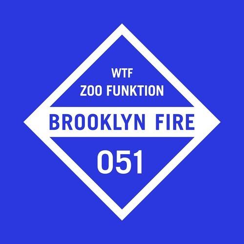 ZooFunktion - WTF (Original Mix)