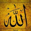 ¯- Abdul Basith Bukhari