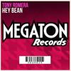 Tony Romera vs Katy Perry - Hey Dark Horse (S.V.S Private Edit) mp3