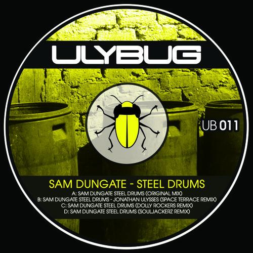 Sam Dungate - Steel Drums (Souljackerz Remix) SNIPPET  80KBPS MP3