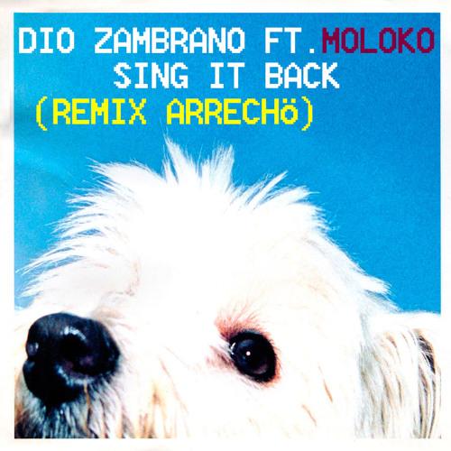 Dio Zambrano Ft. Moloko - Sing It Back (Remix Arrecho)