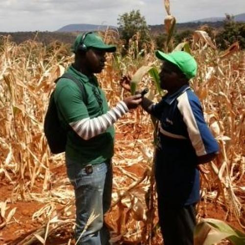 When Production Soils Run Dry