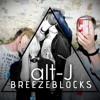 Alt J - Breezeblocks (Daniela Guerra acoustic cover)