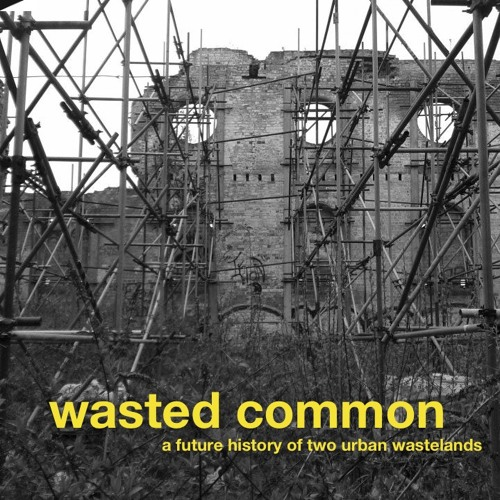 Wasted Common: A Future History of Two Urban Wastelands