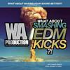 WA Production - What About Smashing EDM Kicks Preview