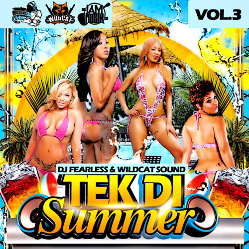 DJ FearLess y Wildcat Sound - Tek Di Summer Vol.  3 (Mix) (julio de 2014)
