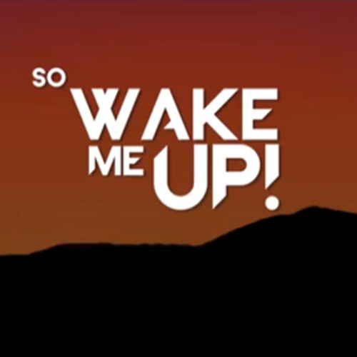 Wake Me Up - Avicii Cover