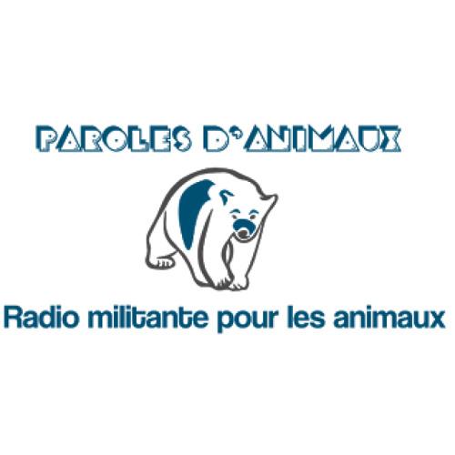 JUILLET 2014 - Soschienperdu.com sur Radio Paroles d'Animaux