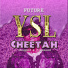 Future Ysl Cheetah Chopped And Finessed Mp3