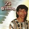 Download RIACHO DO PADRE (QUANDO VOLTAR À TERRA NATAL) - ZÉ WILSON Mp3