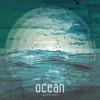 Ocean (Bjorn Rohdes Silent Ocean Mix Görkem Tribute) Görkem Han Jr