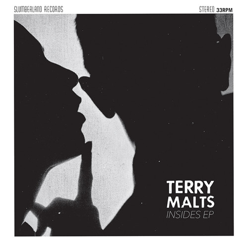 Terry Malts - Let You In