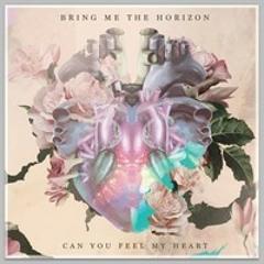 Bring Me the Horizon - Can You Feel My Heart (Lucas McCaffrey Remix)