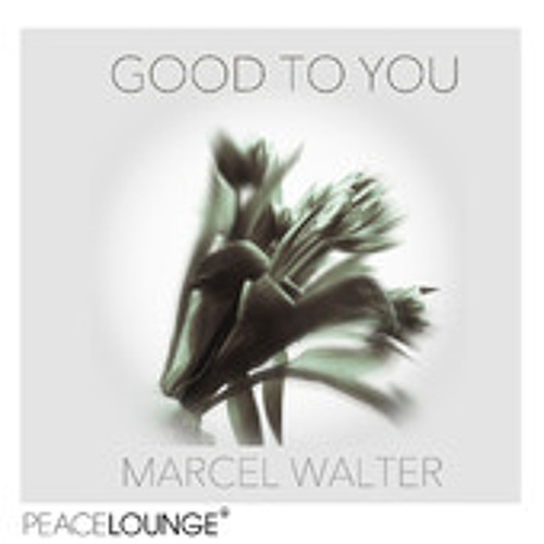 Marcel Walter-Good To You