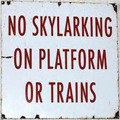 Skylarking - Salook & Silverpaw