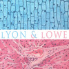 Lyon & Lowe - Everybody Walks To The Beat Of A Child - Love Our Records