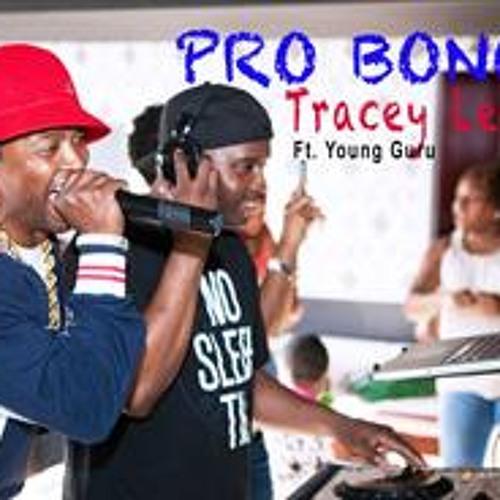 Tracey Lee - Pro Bono Feat. DJ Young Guru