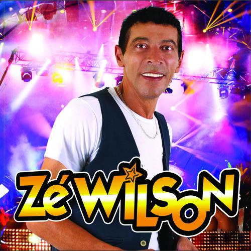 Zé Wilson - Pedágio (2013)