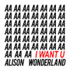 Alison Wonderland - I Want U (GANZ Flip)