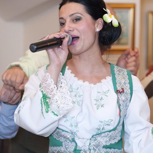 Fanita Modoran Si Ovidiu Band Colaj Muzica De Nunta New 2014 By