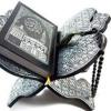 Surah Rehman by Qari Sadaqat Ali (AvS Ahmed - Abdul Manaf)
