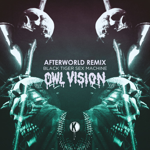 Black Tiger Sex Machine - Afterworld (Owl Vision Remix)