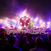 David Guetta, Afrojack, Nicky Romero at Tomorrowland 2013 - Boom, Belgium (Day 3)