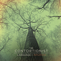 """The Contortionist """"Language I: Intuition"""""""