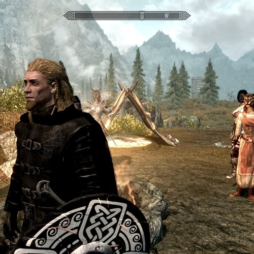 SKYWIND NORD AUDITION