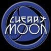 Cherrymoon 31-05-95 Moby @ Teknoville