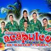 Download SPOT ACAPULCO TROPICAL, LOS BARON DE APODACA Y GRUPO MIRAMAR Mp3