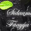 Sidaama Abdi Sidaamiti Faayya