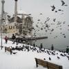 (Ulan İstanbul) Karlos-Yâren/ Yanarım