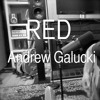 Red- Taylor Swift (Acoustic Cover by Andrew Galucki)