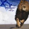 """The Lion of Judah """" Ingles"""""""