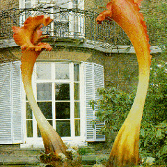 Podcast: July 2014 (2) Night of The Triffids Clip, Listeners' Emails and CJ The Cat