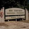 Summer Vacations and Destinations: The Big Thicket National Preserve