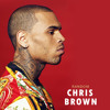 Chris Brown - Started From The Bottom (Freestyle)