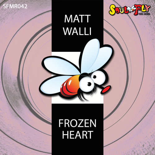 Matt Walli - Frozen Heart /preview/