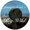 Future Fresh Vol. 3: Big Wild