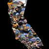 Condition West/Kalifonia