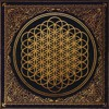 Bring Me The Horizon - Can You Feel My Heart [Credit Remix]