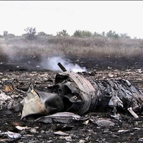 Stephen Cohen: Downed Malaysian Plane Raises Risk of War Between Russia and the West
