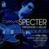 Dave Specter - The Chicago Bluesman's New Album