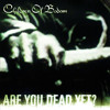 If You Want Peace... Prepare For War - Children Of Bodom (Instrumental)